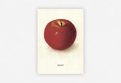 Postkarten Set vom An Apple A Day Kalender 2020