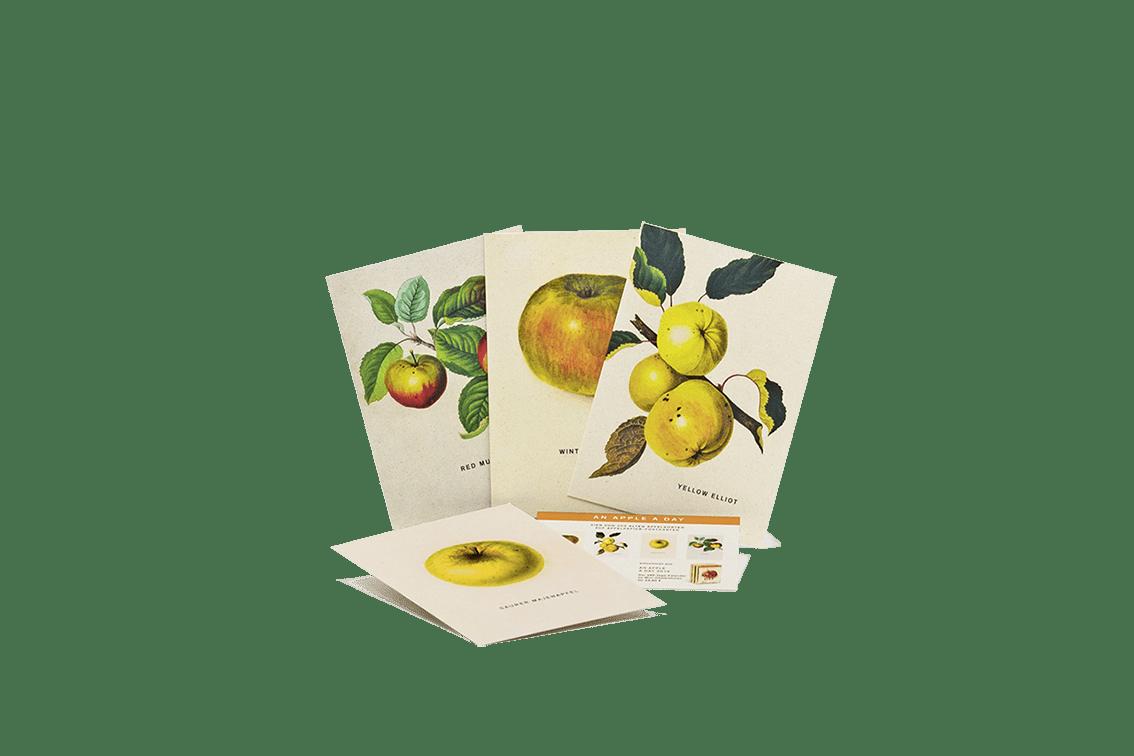 Postkarte vom An Apple A Day 2019